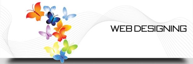 Software Development - Custome Web Development